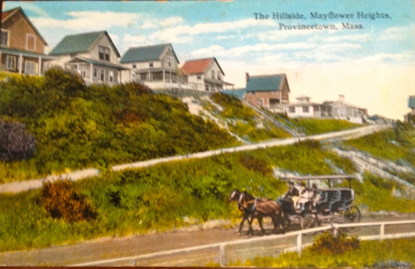 Mayflower heights